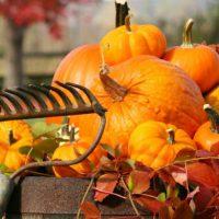 23. Oktober i ord og begivenheder